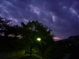 夜公園.jpg